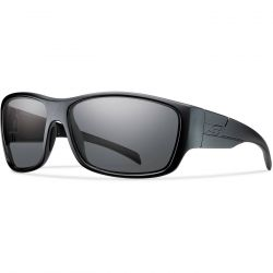 Тактические защитные очки для глаз Smith Optics FRONTMAN TACTICAL FNTPCGY22BK